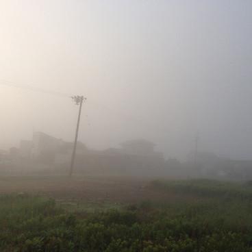 Fog0601